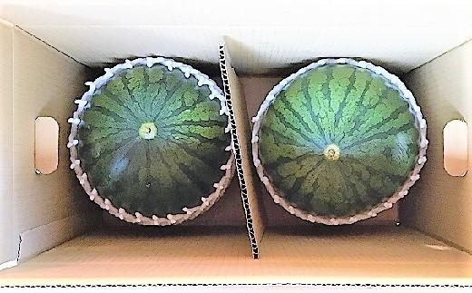 0033-2004 小玉すいか(ひとりじめBONBON)2個