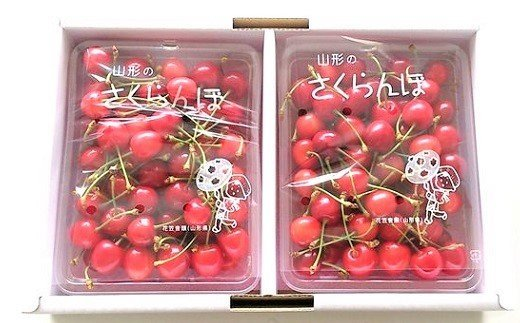 0080-2101 さくらんぼ(佐藤錦)700g Lサイズ