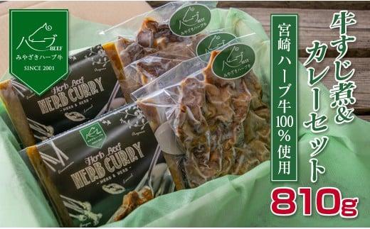<宮崎ハーブ牛>すじ煮&カレーセット※90日以内出荷【B363】