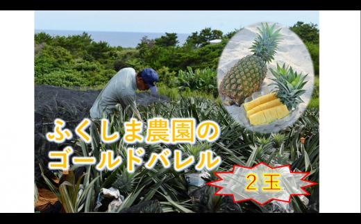 ◆150セット限定◆ふくしま農園の自信作!ゴールドバレル(2玉)3.5kg【2021年7月中旬~発送開始予定!】