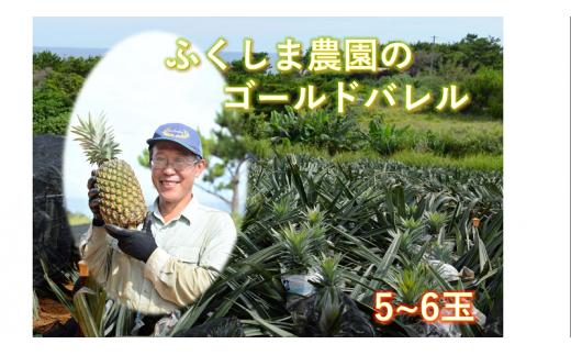 ◆100セット限定◆ふくしま農園の自信作!ゴールドバレル(5~6玉)9kg【2021年7月中旬~発送開始予定!】