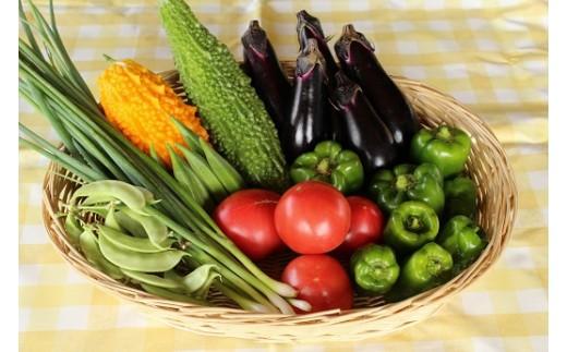 写真は発送商品の一例(夏野菜セット)です