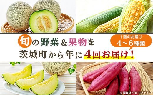 162【年に4回お届け】茨城町産「旬の野菜&果物」セット