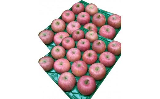 FY19-140 山形のふじりんご 10kg 秀品(24~40玉)