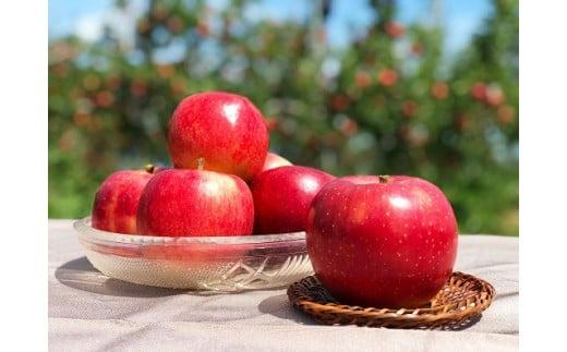 完熟りんご【千秋】約5kg 数量限定