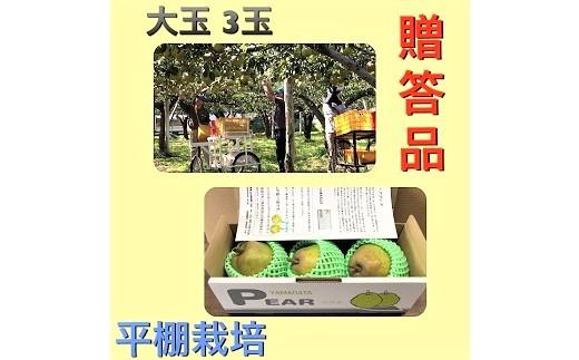 0102-2003 西洋梨(ラ・フランス)大玉3玉 贈答品