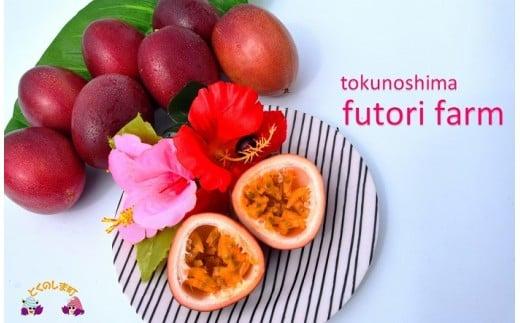 347【旬です!】~甘酸っぱい爽やかな美味しさ~徳之島ふとり農園のパッションフルーツ(2kg)