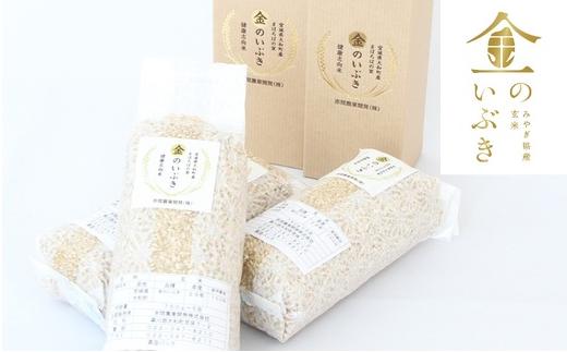 【04421-0032】金のいぶき(贈答用) 玄米 5合×2袋・5合×2箱