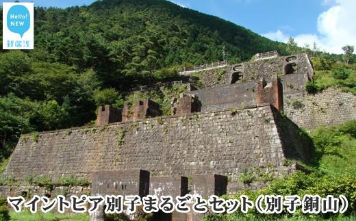 マイントピア別子まるごとセット(別子銅山) 東洋のマチュピチュ
