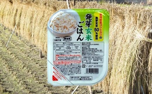 発芽玄米ごはんパック 180g×10個セット