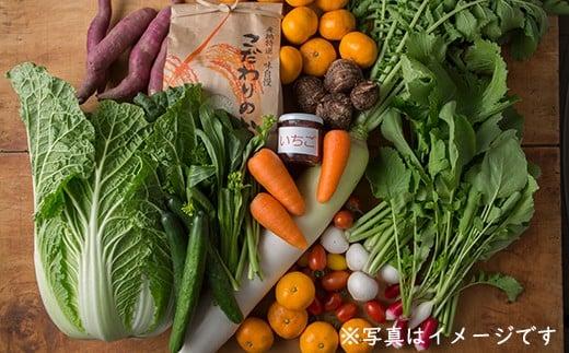 【050-010】【4回お届け】館山産コシヒカリ3kg&旬の味覚詰め合わせ
