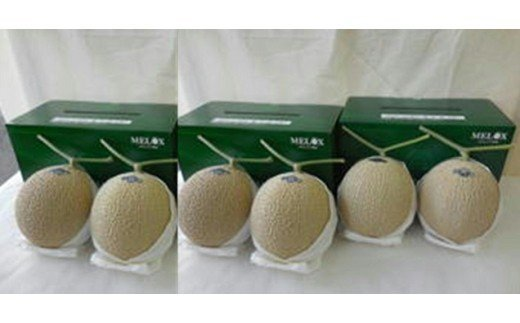 (ニコニコエール品)013-16 高級温室静岡県産アローマメロン6玉化粧箱入