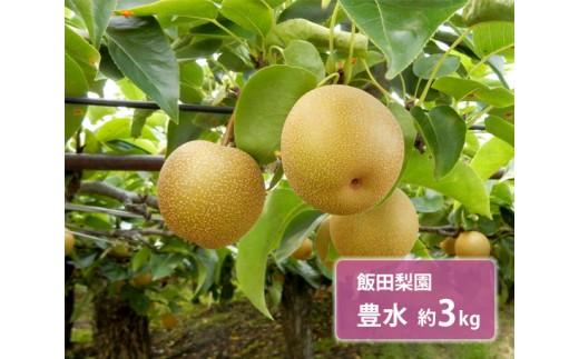 No.122 飯田梨園 豊水 約3kg / 梨 なし 大玉 朝獲り 果物 千葉県 特産品