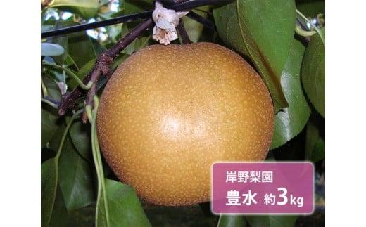 No.128 岸野梨園 豊水 約3kg / 梨 なし 果物 千葉県 特産品