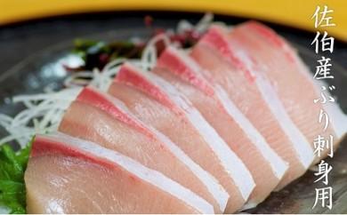 【刺身用】佐伯産ぶり 低温熟成魚切り身 約300g
