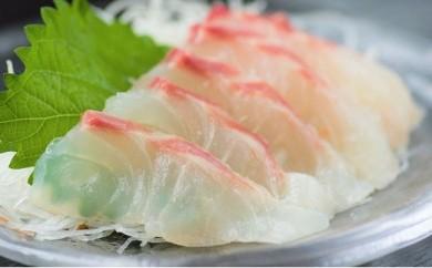【刺身用】佐伯産鯛 低温熟成魚切り身 約300g +あら付きセット