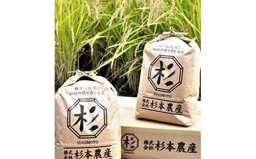 <令和2年産>キヌヒカリ 玄米10kg(5kg×2袋)【1051849】