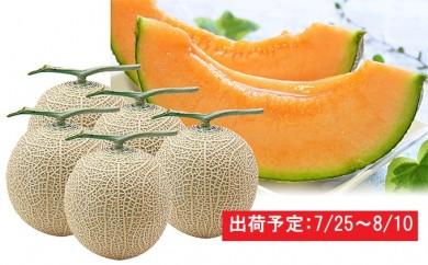 [№5645-1153]津軽産減農薬栽培メロン4~6玉 糖度16度以上保証!