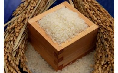 環境こだわり農産物認証!特別栽培米!農産物検査1等 鹿深米みずかがみ5kg