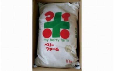 苗作りからの自家製 環境こだわり米 夢ごこち10kg