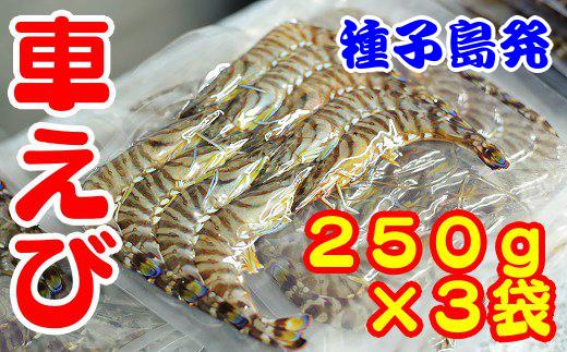 種子島産 車えび(250g×3パック)330pt NF