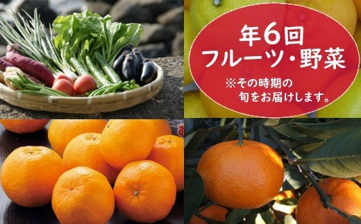 フルーツ・野菜年6回定期便(11月~4月)