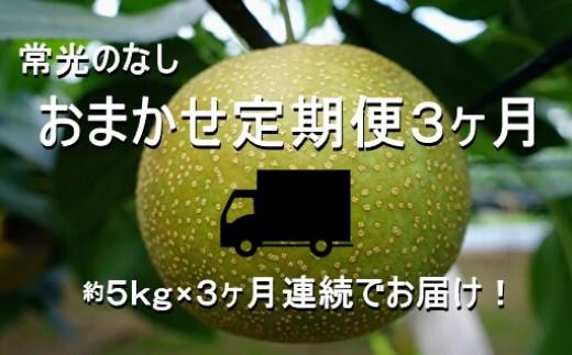 Q-13 【常光のなし】*おまかせ定期便3カ月*~鴻巣市産の梨~