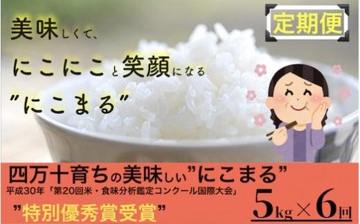Sbmu-12◎令和2年産米◎四万十の美味しいお米(にこまる)。高知のにこまるは四万十の仁井田米【5kg×6回の定期便】