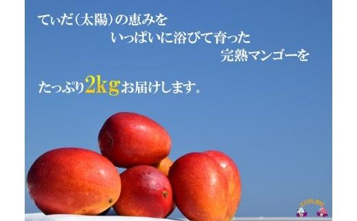 ※キズや色むらもあり贈答用には向きませんが、果肉の美味しさはA品と変わりません!