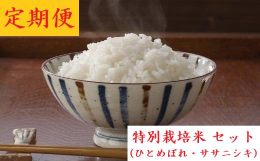 【04421-0012】【10ヶ月定期便】ひとめぼれ・ササニシキ 70kg