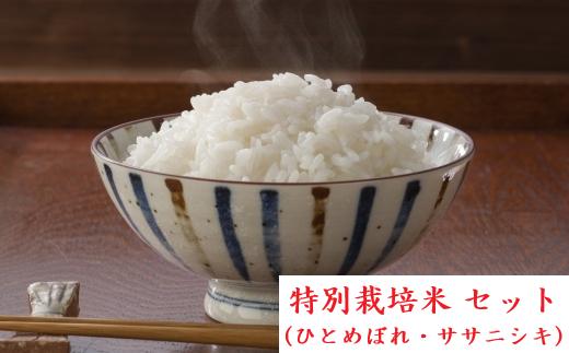 【04421-0009】【一括配送】ひとめぼれ・ササニシキ 35kg