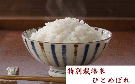 【04421-0004】特別栽培米 ひとめぼれ 14kg