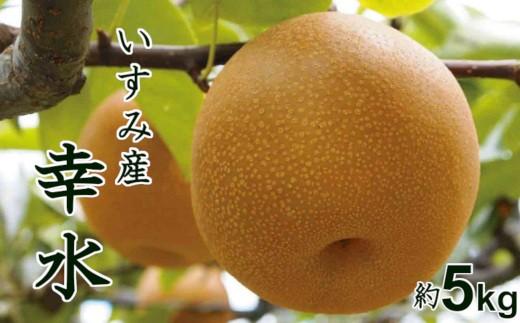 甘くてジューシー♪千葉県いすみ市産幸水梨5kg A618