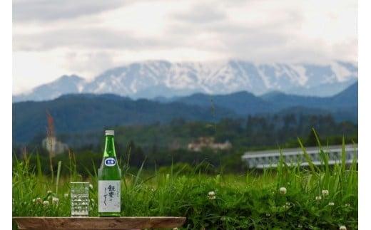 AN-01 オリジナル清酒 しぼりたて生原酒「飯豊のしずく」720ml