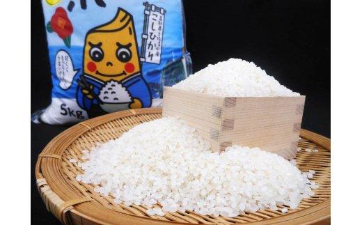 【AG-3】【5回お届け】あしずり黒潮米5㎏(定期便)