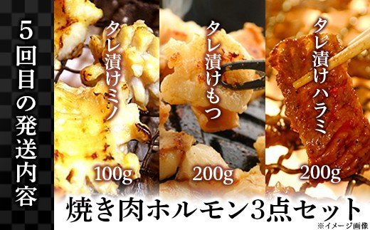 【5回目】焼肉ホルモン3点セット(タレ漬けハラミ200g、タレ漬けもつ200g、タレ漬けミノ100g)