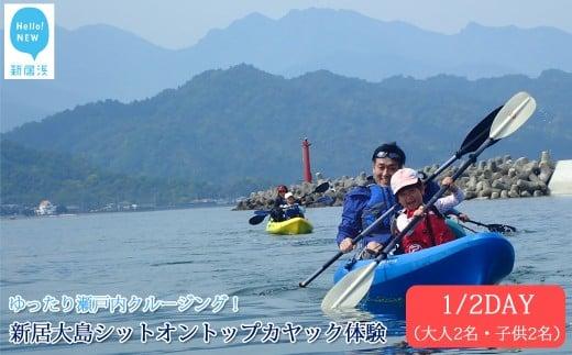 ファミリー向け 新居大島シットオントップカヤック体験 1/2DAY(大人2名・子供2名)