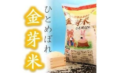 【無洗米】金芽米ひとめぼれ4.5kg