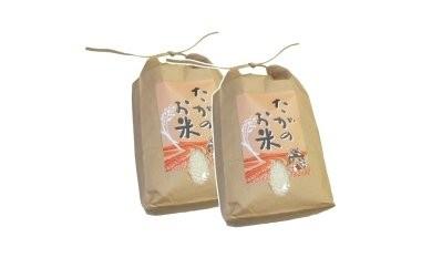 【令和2年産米をお届け】これぞ自然の恵み!おいしい多賀のお米 キヌヒカリ(計10kg)