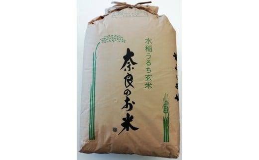 ひのひかり(奈良県天理産) 玄米30kg<令和3年産>(一等米)【1085320】