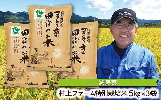 D-11 特別栽培米コウノトリを育む田んぼのお米 5kg×3袋 〈村上ファーム〉