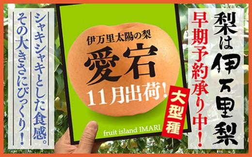 B164【令和3年産先行予約】伊万里梨「愛宕」(約5kg)大型種