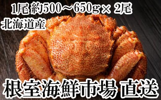 C-28003 根室海鮮市場<直送>ボイル毛がに500~650g×2尾