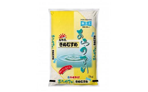 101E.鳥取県産きぬむすめ◇無洗米10㎏◇2020年度産専用!!