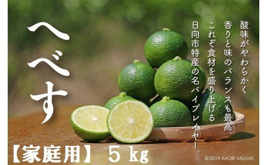 《訳あり》へべすふぞろい果実5kg【家庭用】[10-82 ]