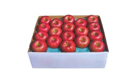 葉とらずリンゴ(サンふじ)5kg_A2-7【1085331】