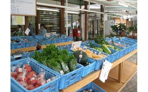 近隣農家で撮れたて野菜がたくさん並び、新鮮で低価格が魅力で遠方からもお客様に来ていただいてます。