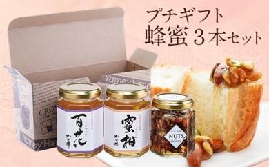 蜂蜜のプチギフトセット(国産百花蜂蜜、国産みかん蜂蜜、はにのみ)