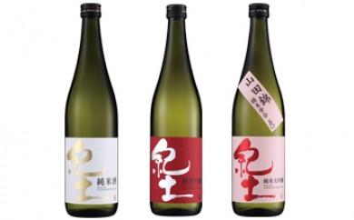 紀土 純米・純米吟醸・純米大吟醸酒 720ml 3本セット