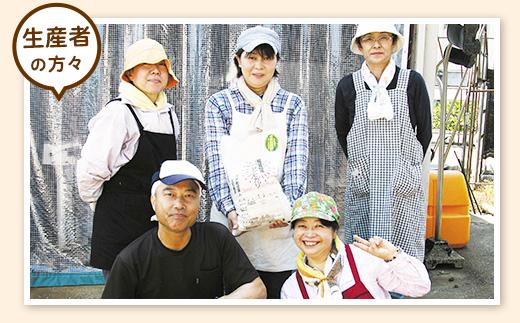 新潟県産米コシヒカリ5kg
